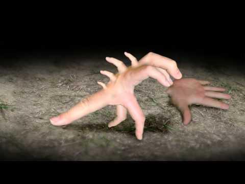 進化する指