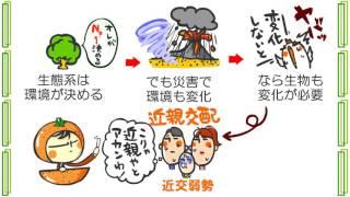 生物5章6話「生物の多様性」byWEB玉塾