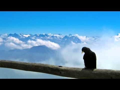 The Chameleons - Soul In Isolation