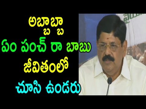 YSRCP Leader Anam Ramanarayana Reddy Satirical Punch Dialogues On TDP AP Leaders | Cinema Politics