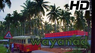 Wayanad , Kerala - The God's Own Country  HD