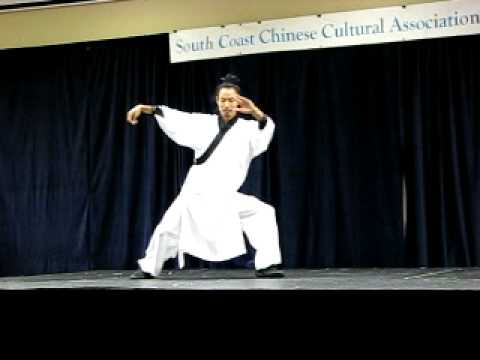 Wudang Tai Chi Quan video