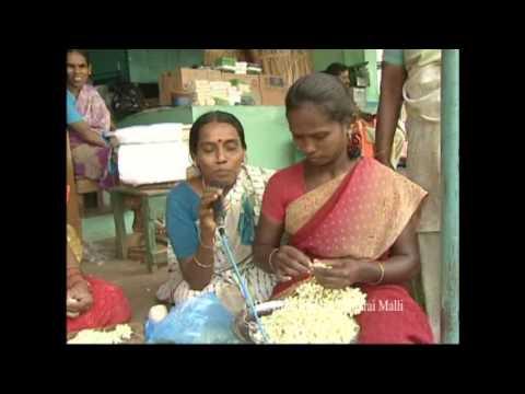 Malligai Picking and Market