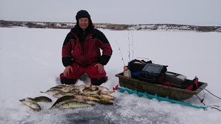 Ice fishing. Marcum LX-9. GoPro 3+. Walleye. Perch.