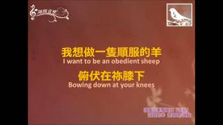 Stubborn Sheep 頑固的羊--Sowing Seeds Music 播種音樂