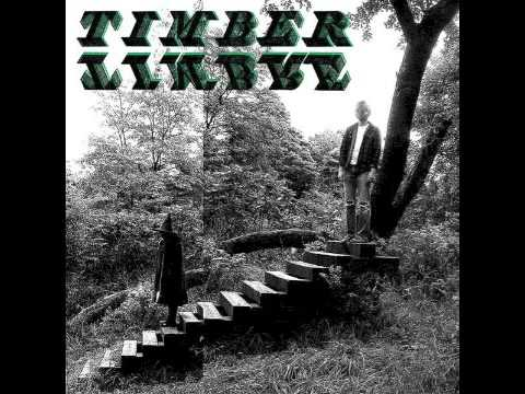 Timber Timbre - No Bold Villain