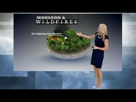 Learn and talk about Alexandra Wilson (meteorologist), American ...