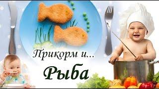 Как приготовить рыбу для 8 месячного ребенка