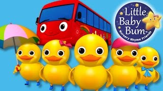 Five Little Ducks | On A Bus! | Nursery Rhymes | Original Song By LittleBabyBum!