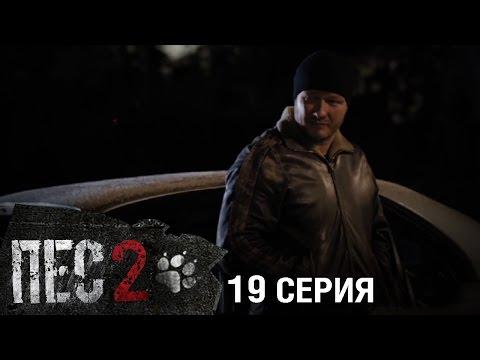 Сериал Пес - 2 сезон - 19 серия