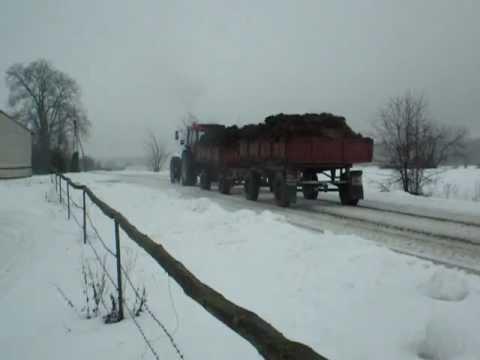 Ursus rusza na śniegu.