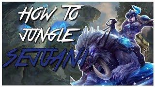 How to Sejuani jungle Guide | Season 8 Patch 8.6 | League of Legends