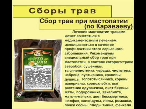 эту как правильно пить травы при мастопатии овощным
