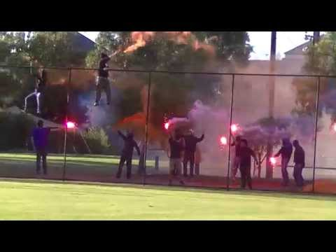 Beograd fans supporting their team - No Pyro No Party