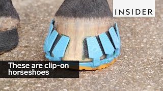 These are clip-on horseshoes