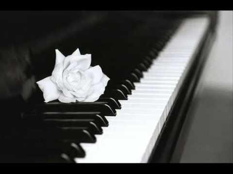 canon instrumental (remix)