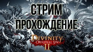 Побережье Жнеца Divinity: Original Sin II прохождение