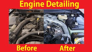 DIY Engine Cleaning Detail Motors How To De-grease Car Motor #2