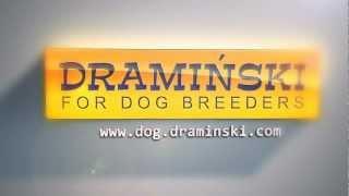 DRAMIŃSKI Dog Ovulation Detector / DRAMIŃSKI Wykrywacz rui dla psów
