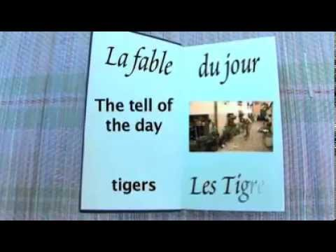 Tigers – short film