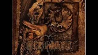 Watch Necrophagist Culinary Hyperversity video