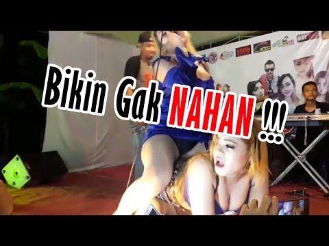 Si Montok Semok Rita Ratu Tawon & Silvia Angelina - Dangdut Hot