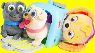 Puppy Dog Pals Crate Toys with Disney Junior Bingo, Rolly, and Keia   Frozen 2