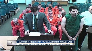 Documents released in Joshua Carmona