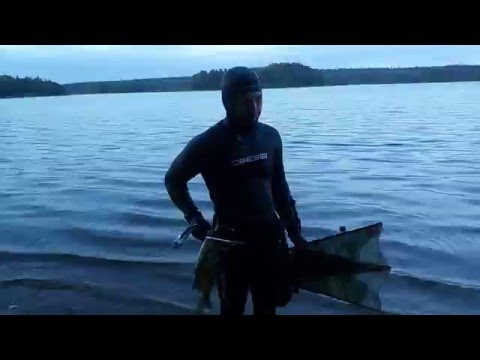 того, бельё подводная охота на сазана ночью летом обувь