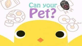 Can Your Pet - THE BEAUTIFUL STORY OF PETTO DI POLLO! (Episodio Unico)