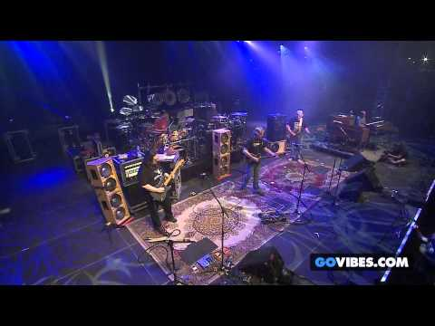 "Dark Star Orchestra performs ""Black Throated Wind"" at Gathering of the Vibes Music Festival 2014"