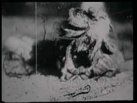 Evolution (1923) (Spanish sub.)