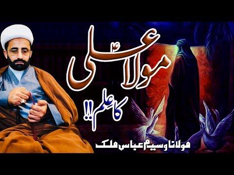Maula Ali (a.s) Ka Ilm !! | Maulana Waseem Abbas Malik | 4K