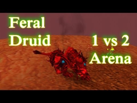 WOW PVP Feral Druid 1 VS 2 Arena