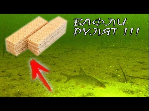 РЕАКЦИЯ РЫБЫ НА ВАФЛИ!!! Подводная съемка | Зимняя рыбалка 2018