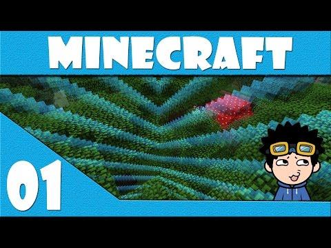 Episode 1 | The Basics | Minecraft Multiplayer World Border Survival