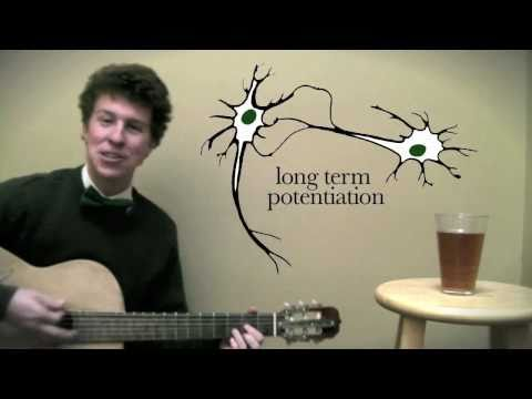 A Biologist's St. Patrick's Day Song