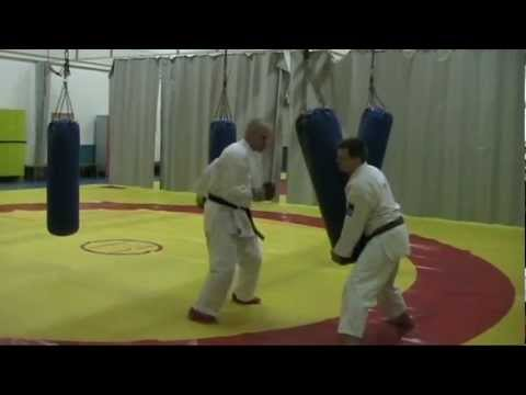 Kimura Shukokai: Training Yin & Yang -power. 空手- demo by Oulun Shukokai karate, Finland. Image 1