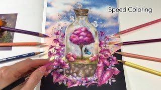 """SPEED COLORING 