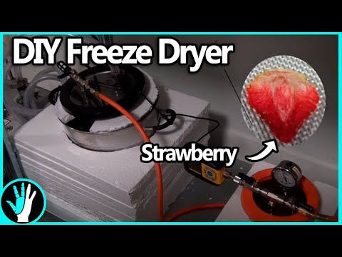 How to Build a Freeze Dryer - YouTube