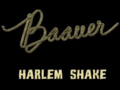 10 Hour Loop :: Harlem Shake