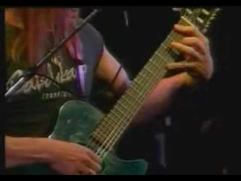Steve Morse - Picture This