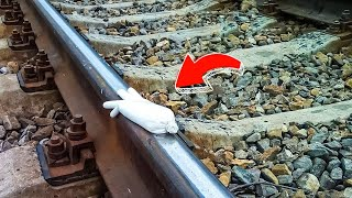 Never Put Salt on Railway Tracks Unless You Want to Have Problems
