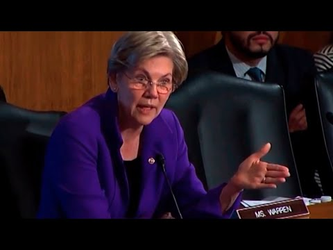 Elizabeth Warren Spanks Fannie/Freddie Chief & He Barely Survives
