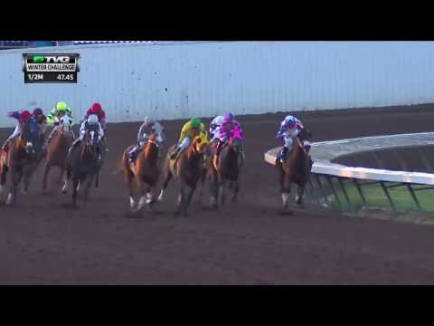 RACE REPLAY: 2016 Winter Challenge Stakes Featuring California Chrome