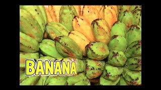 How to harvest bananas from an extremely tall plant. Saba Down 3 Extreme