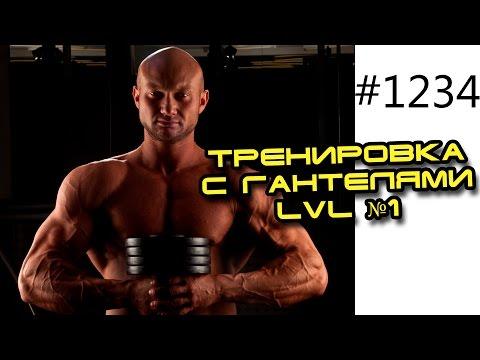 Тренировка с гантелями LVL №1 в домашних условиях для мужчин