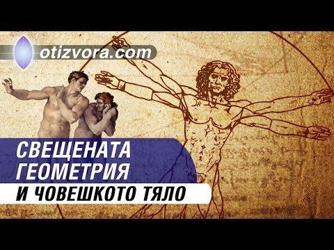 Свещената геометрия и човешкото тяло