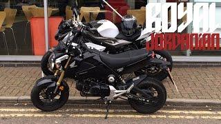 Honda MSX 125 (Grom) test ride