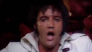 download lagu Elvis Presley - I Can't Help Falling In Love gratis